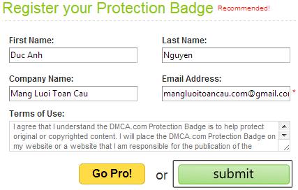 Điền thông tin vào mẫu đăng ký DMCA