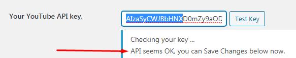 API key hoạt động